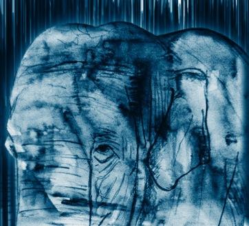 Elephant Sketch2.2