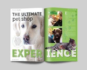 Magazine spread design for FEAST Magazine